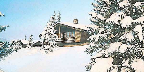 Holiday home in Nes