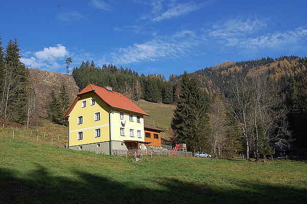 Villa in Gemeinde Pernegg an der Mur
