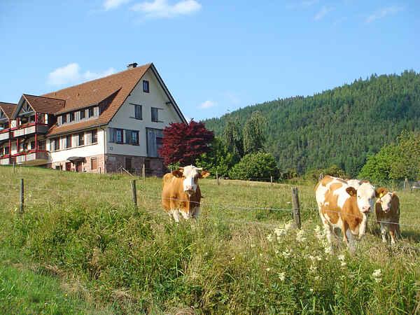 Ferielejlighed i Klosterreichenbach