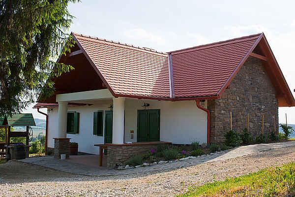 Villa i Vindornyalak