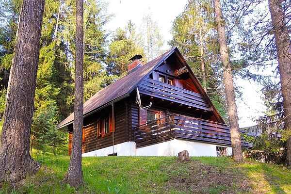 Villa i Gozd Martuljek
