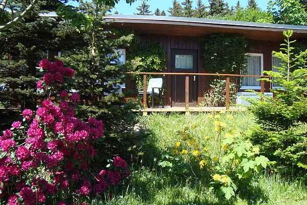 Sommerhus i Höhenluftkurort Grünbach