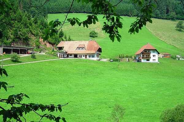 Ferielejlighed i Bollenbach