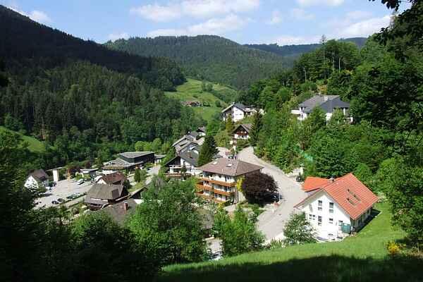 Ferielejlighed i Bad Rippoldsau-Schapbach