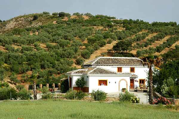 Cottage in Loja