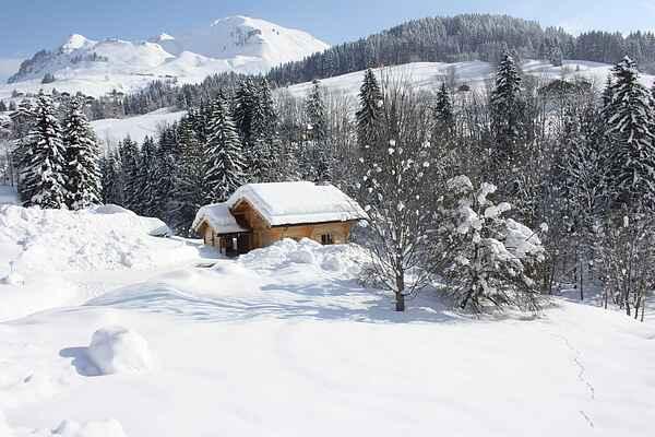 Hytte i Le Grand-Bornand