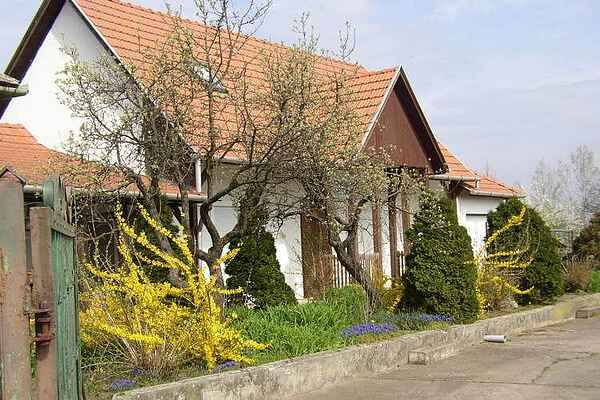 Holiday home in Tiszaderzs
