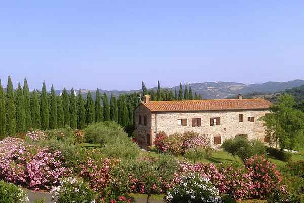 Holiday home in Castelnuovo di Val di Cecina