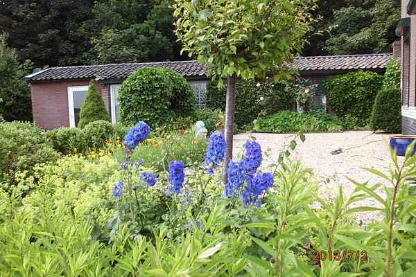 Cottage in Egmond aan den Hoef