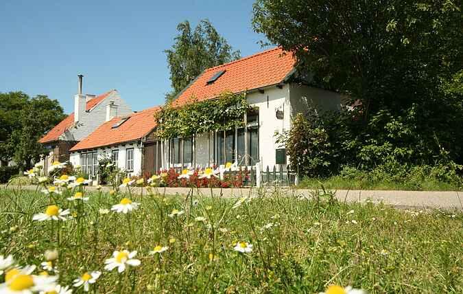 Sommerhus mh31401