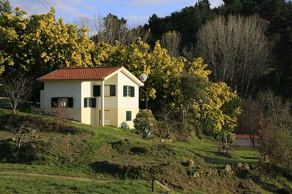 Cottage in Covas