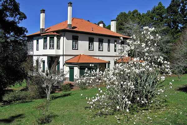 Villa in Santo António Da Serra