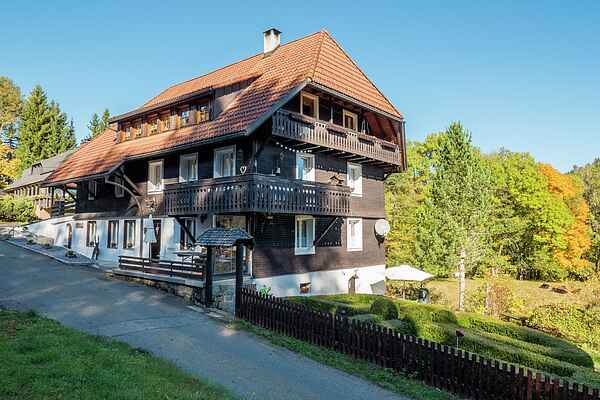 Apartment in Wittenschwand
