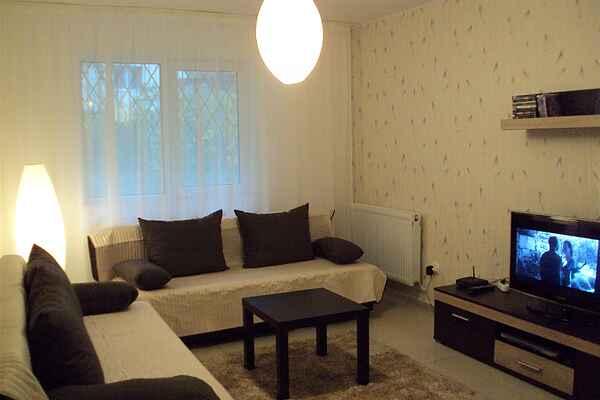 Charming flat near Brasov
