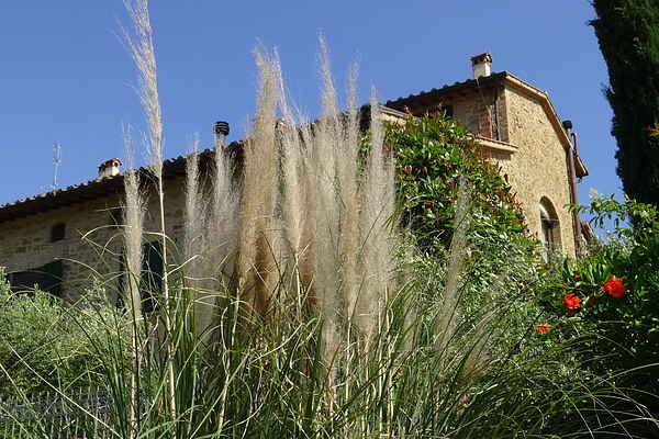 Sommerhus i Mura