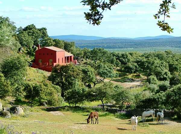 Casa rurale in Montánchez