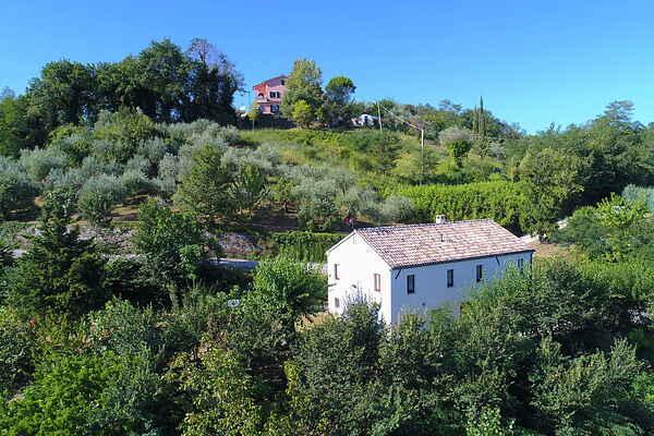 Farm house in Villa del Monte