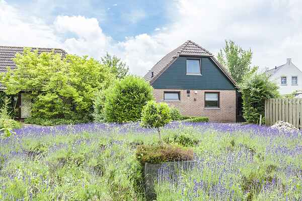 Holiday home in Wolphaartsdijk