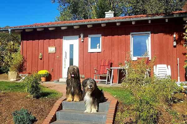 Sommerhus i Laisa