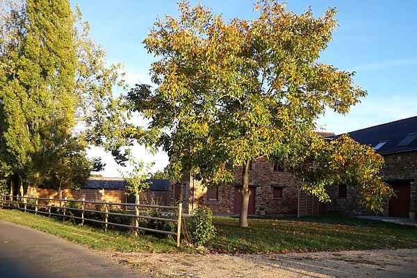 Sommerhus i Champteussé-sur-Baconne