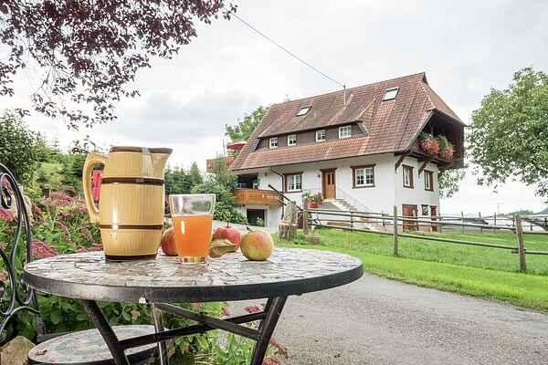 Ferielejlighed i Oberharmersbach