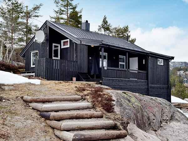 Sommerhus i Åseral