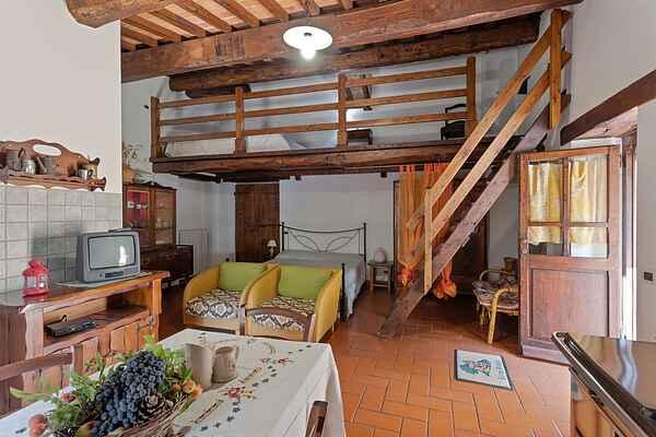 Farm house in Cortona
