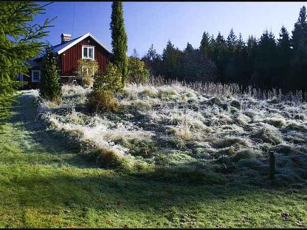 Sommerhus i Mark Ö