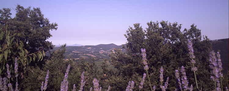 Den italienske drøm i eventyrlige Marche