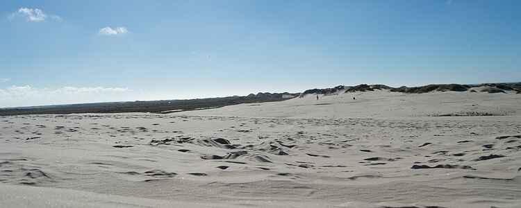 På tur i ørkenen: Sandsurfing og fatamorganaer