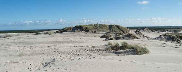 På tur i öknen: Sandsurfing och fata morgana