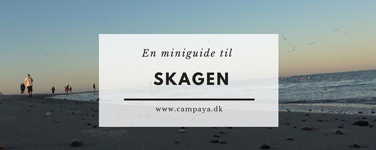 Miniguide til Skagen