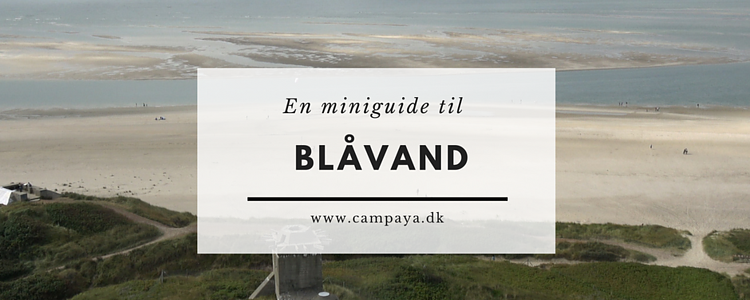 Miniguide til Blåvand