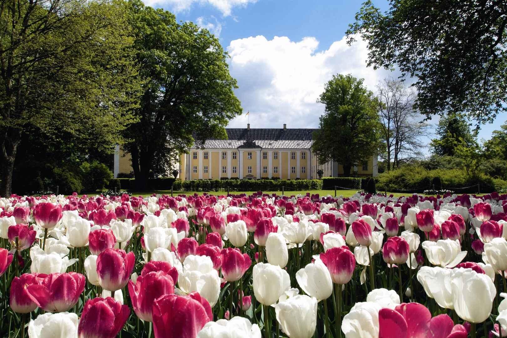 18 Af De Bedste Aktiviteter Og Oplevelser På Sjælland 2019
